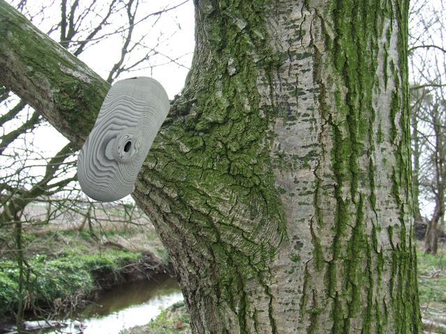 Camo Camera on a tree branch