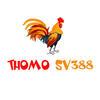 Thomo SV388's picture